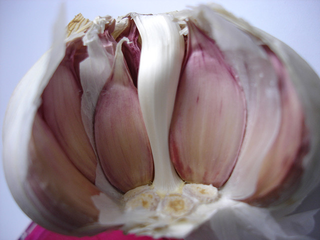Will Carson et al's study be the garlic that deters the most blood thirsty colleagues? The image is CC by Gaviota Paseandera.